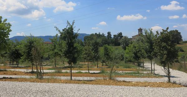 Toscane - Agri Campeggio Ai Linchi - Sant'Alessio, LUCCA - Immerso nel Verde delle Colline Lucchesi